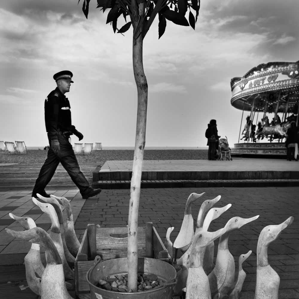 Policeman and Geese Brighton